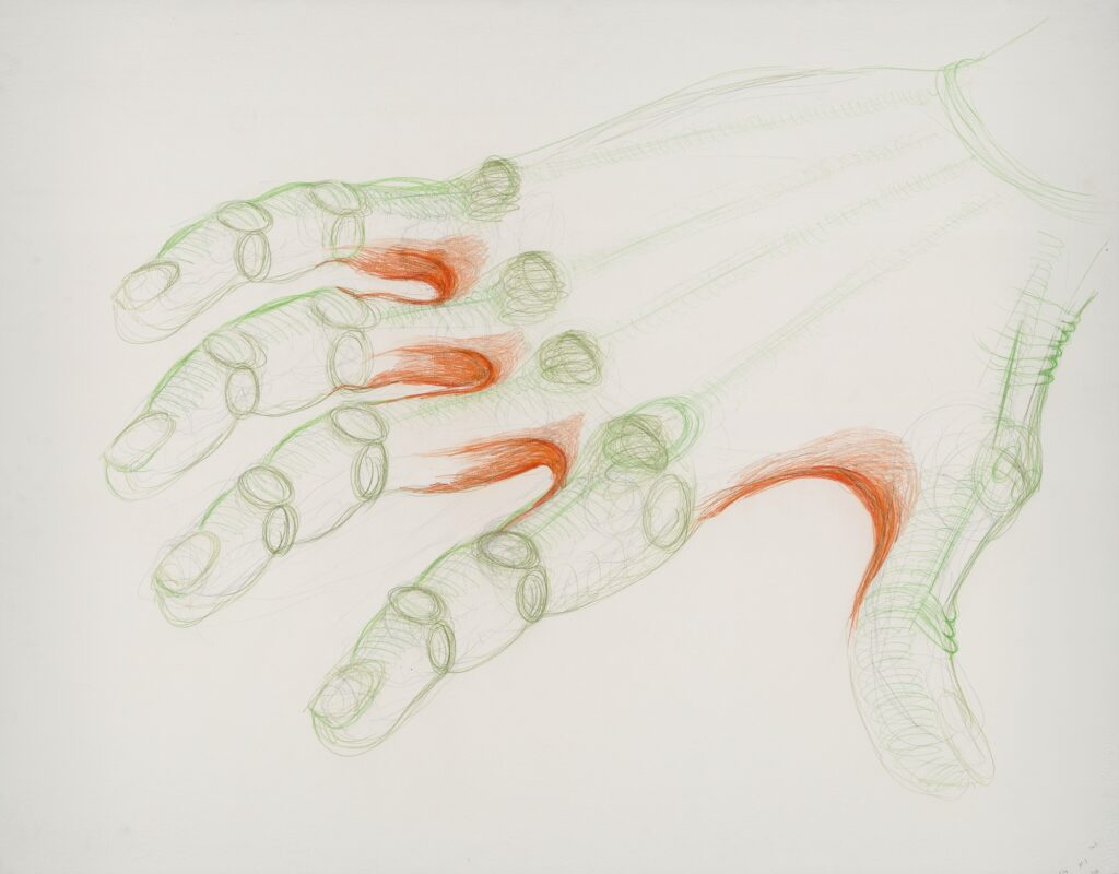 Orange skin. 110 x 140 cm. Coloured pencil on paper. 2015.