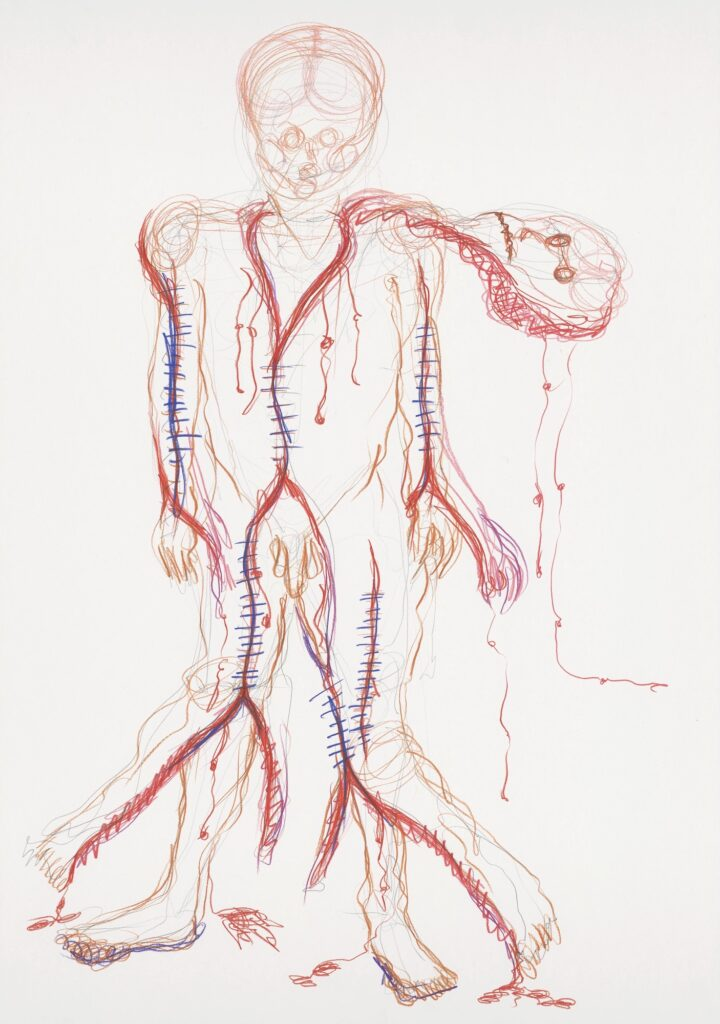 Skin coat. Coloured pencil on paper. 70 x 100 cm. 2009.