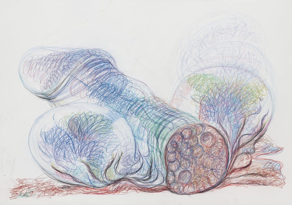 Untitled. Coloured pencil on paper. 70 x 100 cm. 2010. (page 133)