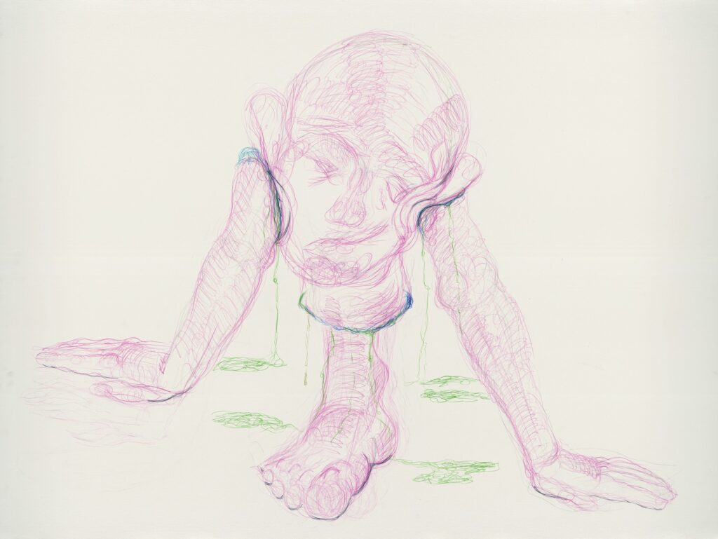 Untitled. Coloured pencil on paper. 120 x 160 cm. 2013.