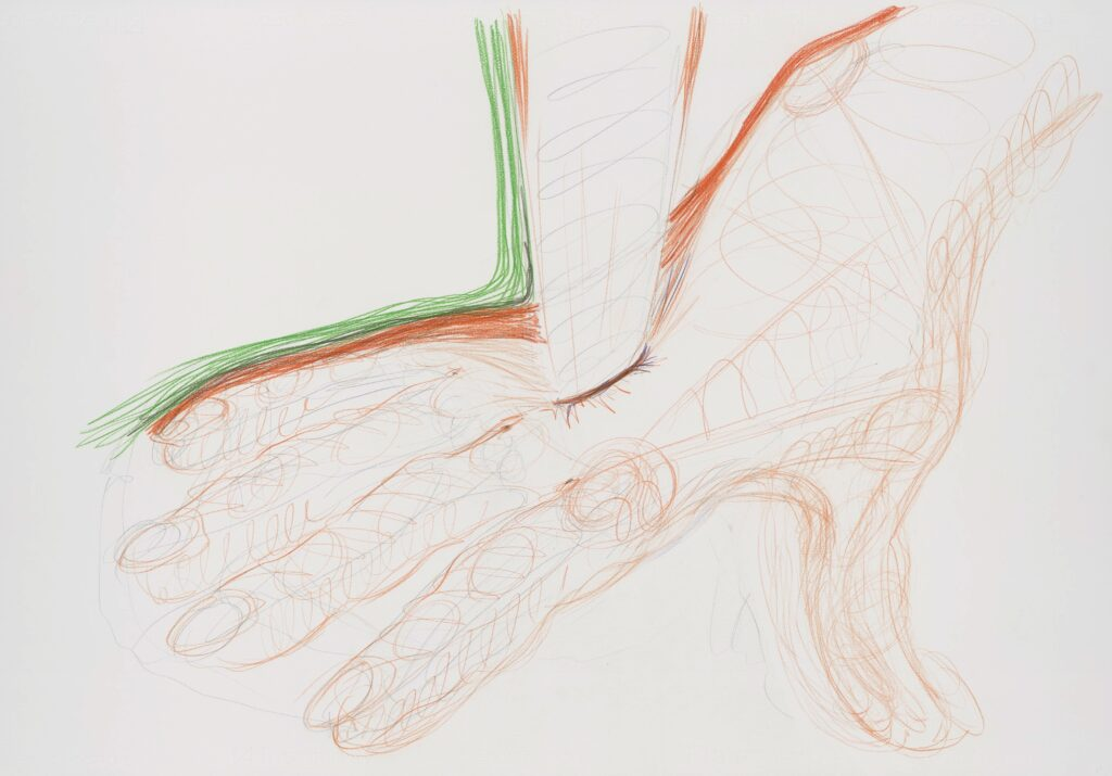 Untitled. Coloured pencil on paper. 70 x 100 cm. 2013.