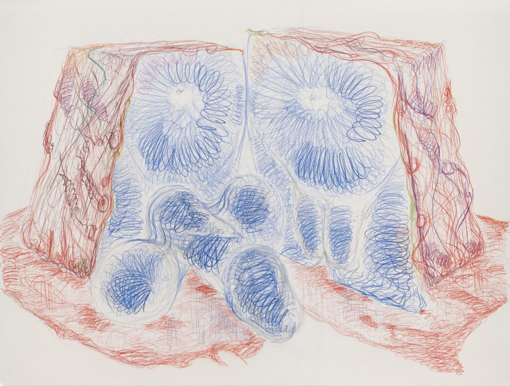 Untitled. Coloured pencil on paper. 120 x 160 cm. 2011.