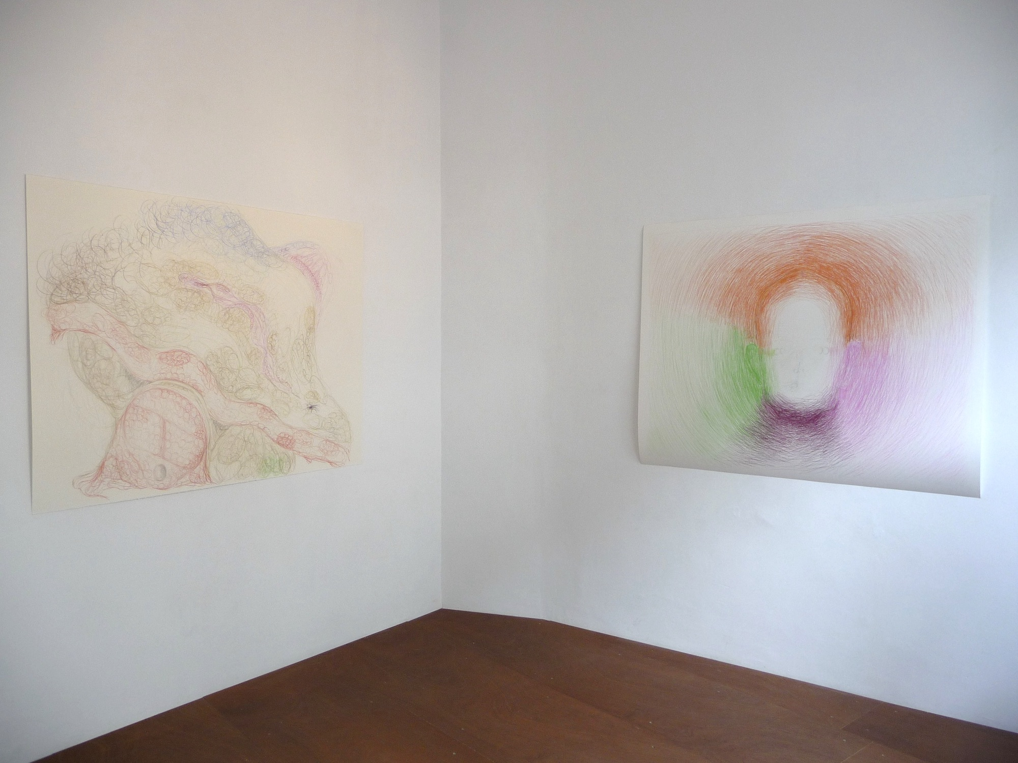 Overview Wet Towel exhibition. Spaceburo. 2015. Left: Coitus. 120 x 160 cm. Coloured pencil on paper. 2011. Right: Head. Coloured pencil on paper. 120 x 150 cm. 2015.