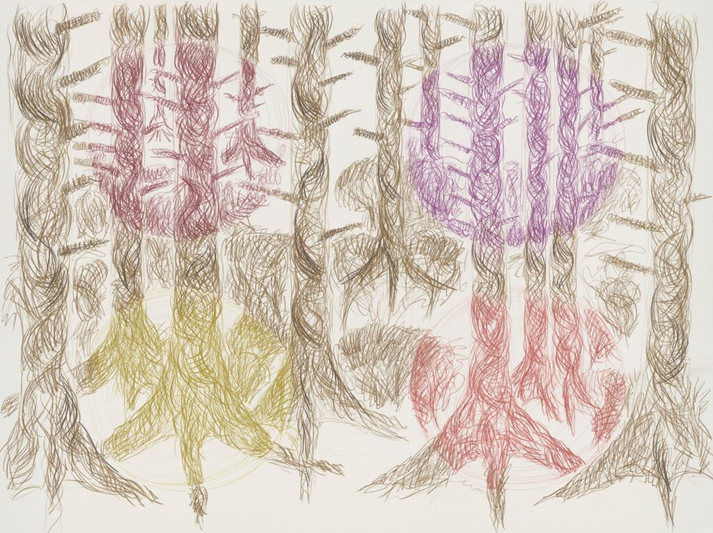 Forest. Coloured pencil on paper. 120 x 160 cm. 2013.