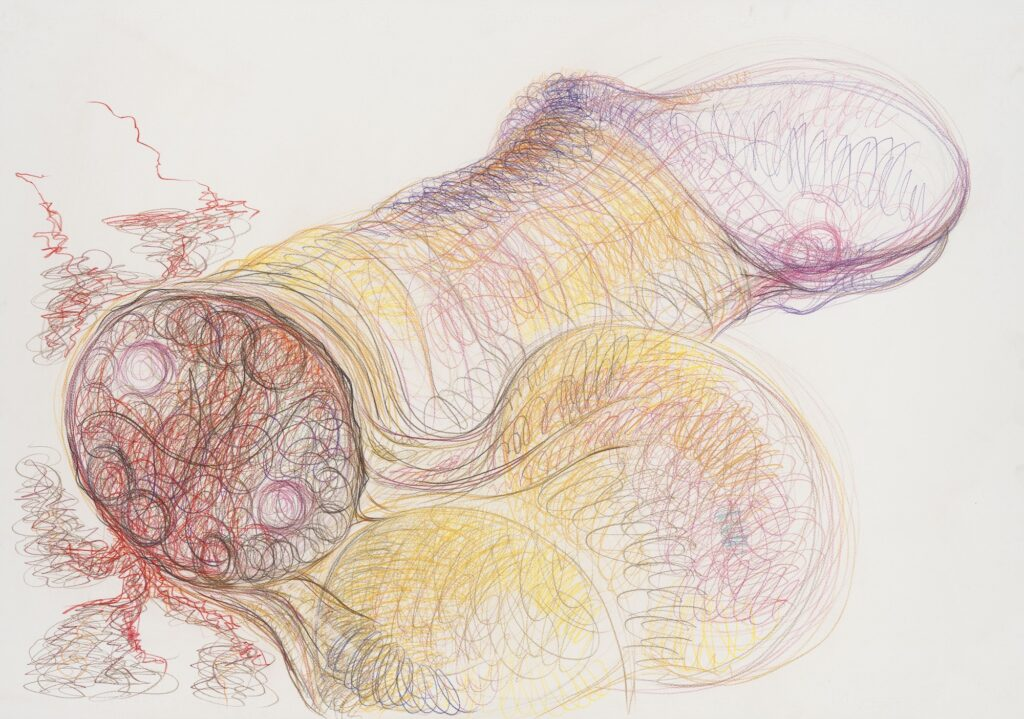 Untitled Coloured pencil on paper 70 x 100 cm, 2010