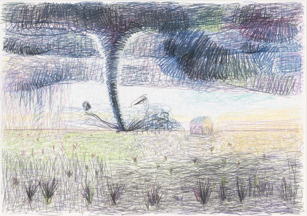 Dry grass. Coloured pencil on paper. 70 x 100 cm. 2007.