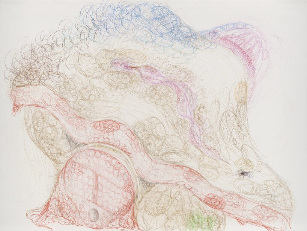 Untitled. (also: Coïtus). Coloured pencil on paper. 132 x 175 cm. 2011.