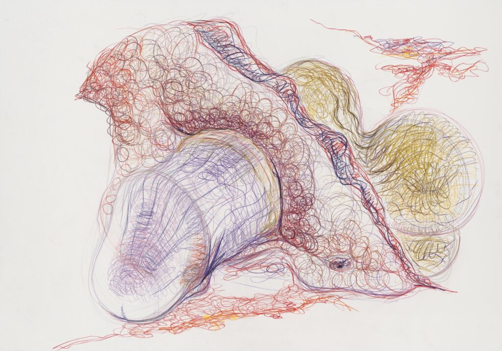Untitled. Coloured pencil on paper. 70 x 100 cm. 2010. (page 143)