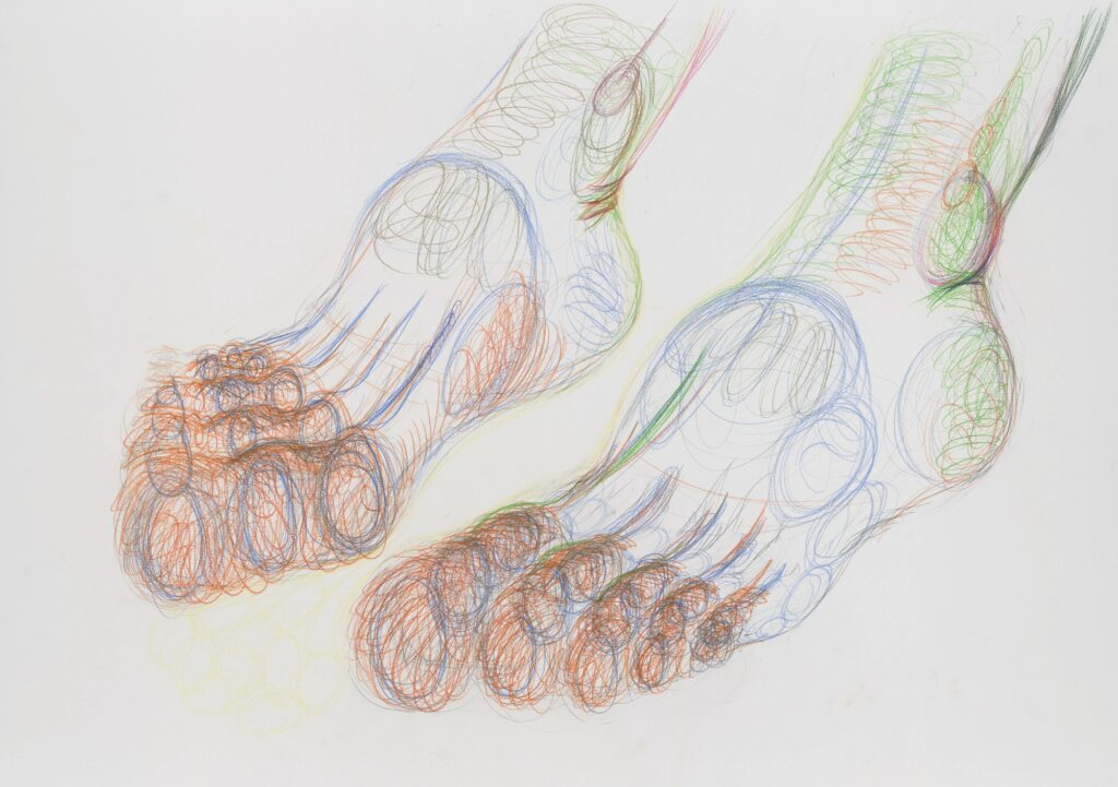 Toes. Coloured pencil on paper. 70 x 100 cm. 2013.