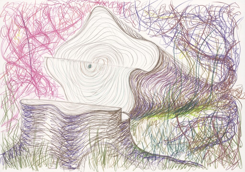 Naked. Coloured pencil on paper. 70 x 100 cm. 2005.